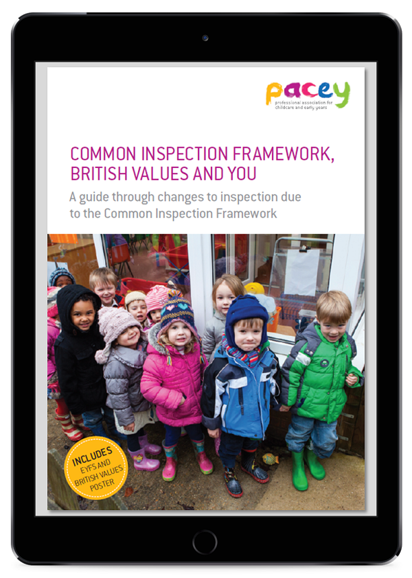 Common Inspection Framework eBook