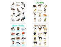 Animal Posters (Set of 4)